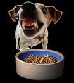Snarling dog and food bowl found on oztreasure.weebly