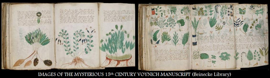 IMAGES OF THE MYSTERIOUS 15th CENTURY VOYNICH MANUSCRIPT
